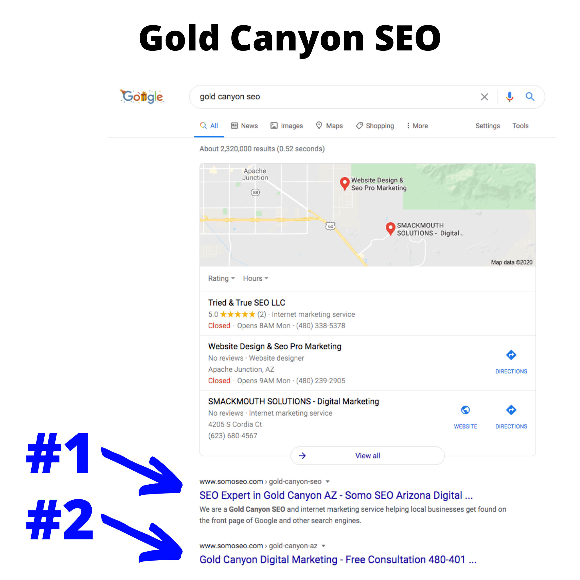 Gold Canyon SEO search results
